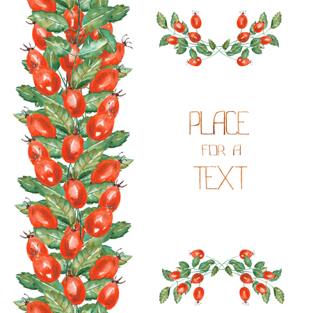 cowberry: A template of a postcard, floral ornament and frame border with the rosehip branches, hand-drawn in a watercolor on a white background