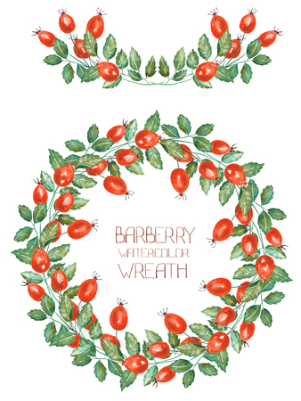 cowberry: A circle frame, wreath and garland of the rosehip branches, hand-drawn in a watercolor on a white background, a decoration postcard or invitation for a wedding, celebration, holiday
