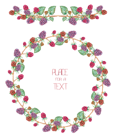 florescence: A circle frame, wreath and garland with the watercolor forest berries (blackberry)