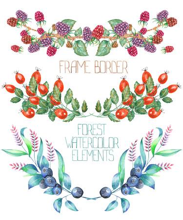 A confini telaio con un ornamento floreale degli elementi acquerello forestali: more, crespino e mirtilli, su uno sfondo bianco, per un biglietto di auguri, una decorazione di un invito a nozze