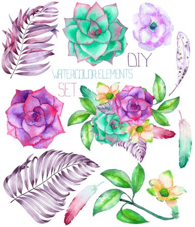 分離の水彩花の要素からなる集合: 多肉植物、花、葉、手描きの花束や装飾品のセルフ コンパイルのための白い背景の上の羽 写真素材