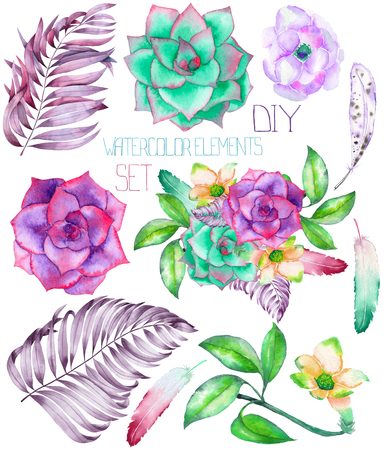 palm wreath: A set with the isolated watercolor floral elements: succulents, flowers, leaves and feathers, hand-drawn on a white background, for self-compilation of the bouquets and ornaments Stock Photo