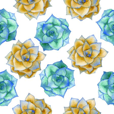 florescence: A seamless pattern with the watercolor blue and yellow succulents, hand-drawn on a white background