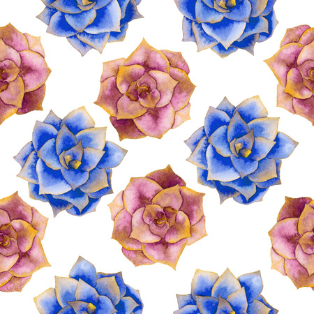 versicolor: A seamless pattern with the watercolor various kinds of succulents, hand-drawn on a white background