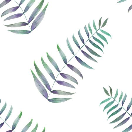 緑のヤシとシームレスなパターンの葉、シダの葉、手描き水彩画で白の背景に 写真素材
