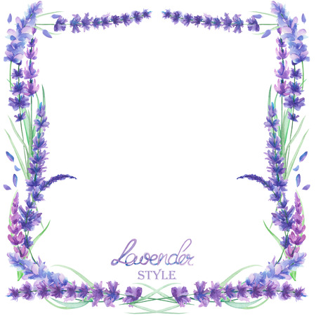 Шаблон карты, границы кадра для текста с акварель цветы лаванды, нарисованные от руки на белом фоне, поздравительную открытку, украшения, открытки свадьба приглашения