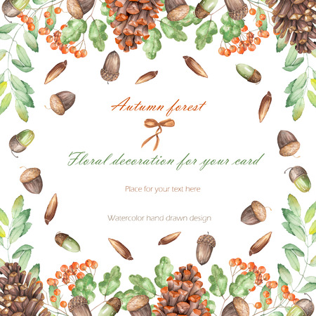 rowan tree: Background, template postcard, frame with the watercolor forest plants (oak acorns, fir cones, rowan tree), hand drawn on a white background, greeting card, decoration postcard or invitation Stock Photo