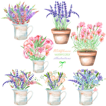 florescence: A set of illustrations with a bouquet of the beautiful wildflowers in a rustic jar and pots, isolated hand drawn in a watercolor on a white background