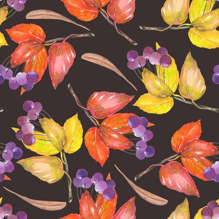 viburnum: A seamless pattern with a floral ornament of the watercolor red and yellow autumn leaves and purple berries on the branches, viburnum tree on a dark background Stock Photo