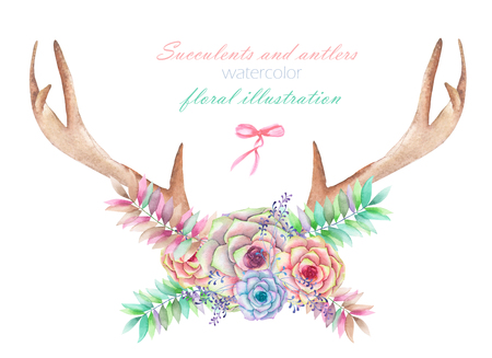 entwined: A floral watercolor illustration with the antlers, entwined succulents, flowers, leaves and branches, for decoration, isolated hand drawn on a white background, wedding design