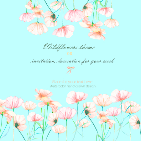 cosmos flower: Background, invitation card, template postcard with the tender pink cosmos flowers, hand drawn on a mint background, background for your card and work