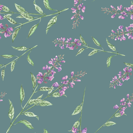 phytology: Seamless floral pattern with salvia flower, hand drawn in watercolor on a green background Stock Photo