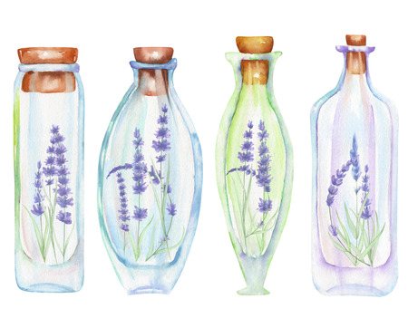tender: Illustration romantic and fairytale watercolor bottles with tender lavender flowers inside, hand drawn isolated on a white background