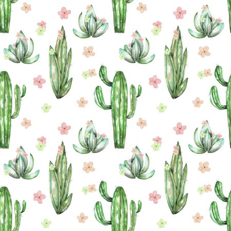 florescence: A seamless pattern with the watercolor various kinds of cactuses and flowers, hand drawn on a white background