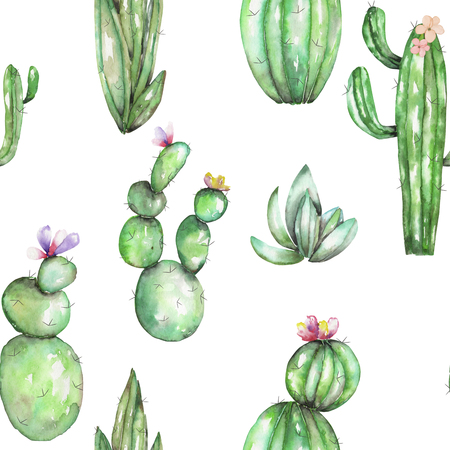 A seamless pattern with the watercolor various kinds of cactuses, hand drawn on a white background