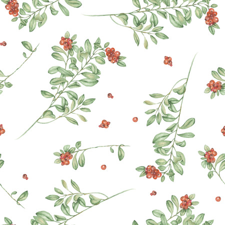 phytology: Seamless floral pattern with cowberry, hand drawn in watercolor on a white background