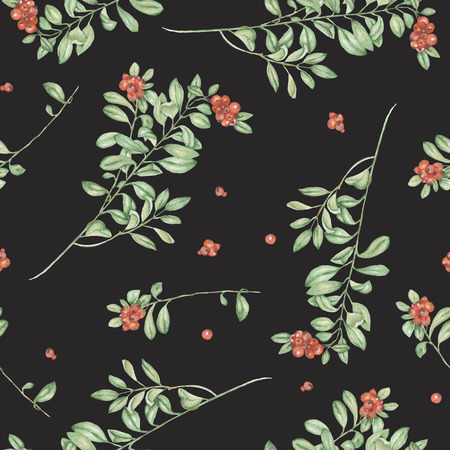 phytology: Seamless floral pattern with cowberry, hand drawn in watercolor on a dark background