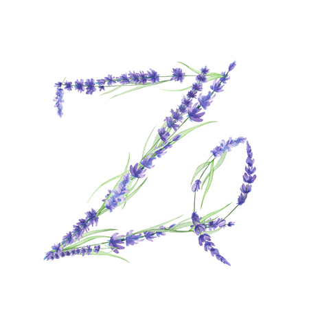 ideograph: Capital letter Z of watercolor lavender flowers, isolated hand drawn on a white background, wedding design, english alphabet for the festive and wedding decor and cards Stock Photo
