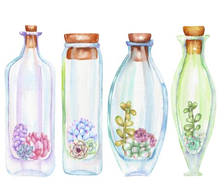 peyote: Collection of florariums, set of watercolor bottles with succulents and cuctuses inside, hand drawn isolated on a white background Stock Photo