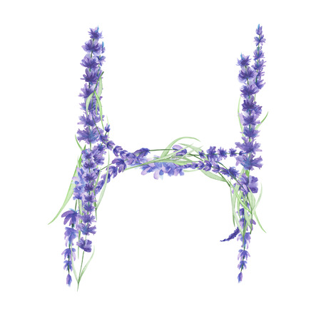 ideograph: Capital letter H of watercolor lavender flowers, isolated hand drawn on a white background, wedding design, english alphabet for the festive and wedding decor and cards Stock Photo