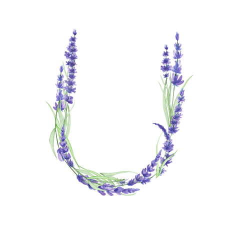ideograph: Capital letter U of watercolor lavender flowers, isolated hand drawn on a white background, wedding design, english alphabet for the festive and wedding decor and cards