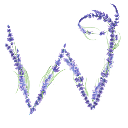 ideograph: Capital letter W of watercolor lavender flowers, isolated hand drawn on a white background, wedding design, english alphabet for the festive and wedding decor and cards Stock Photo