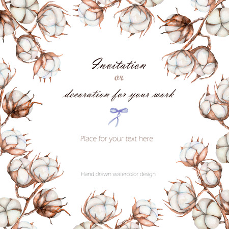 Background, template postcard with the cotton flowers branches, hand drawn on a white background, background for your card and work Stockfoto