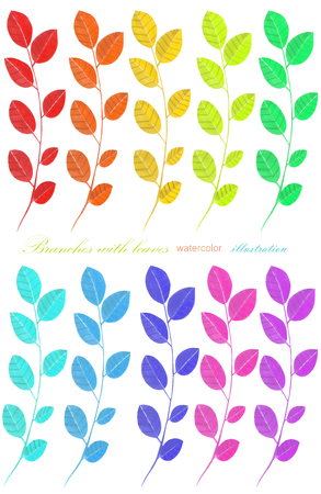 Set, collection of the watercolor branches with leaves, hand painted isolated on a white background