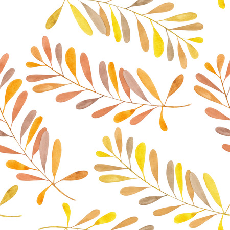 linden tree: Seamless pattern with the watercolor branches with brown and orange leaves, hand painted isolated on a white background