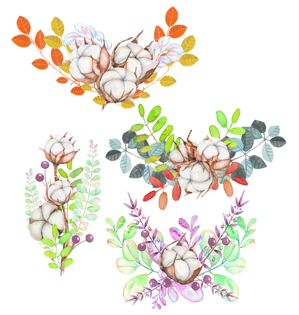 Collection of illustrations of watercolor cotton flowers bouquets, hand drawn isolated on a white background Stock Photo