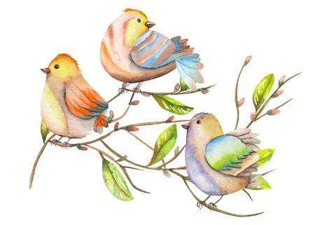 Illustration of the watercolor birds on the tree branches, hand drawn isolated on a white background Stock Photo