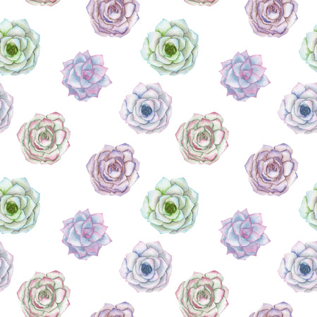 tender: Seamless pattern with the watercolor tender mint and purple succulents, hand drawn on a white background