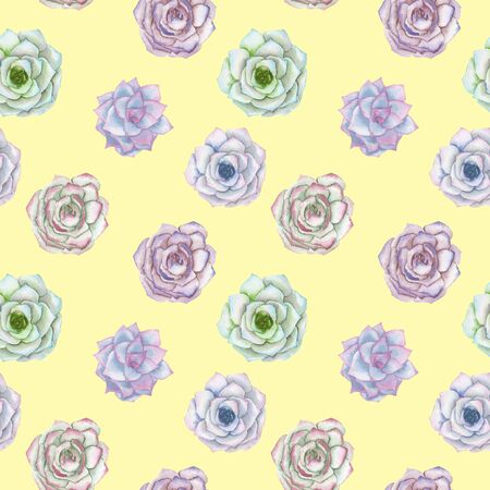 tender: Seamless pattern with the watercolor tender mint and purple succulents, hand drawn on a yellow background