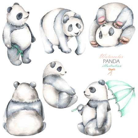 china watercolor paint: Collection, set of watercolor pandas illustrations, hand drawn isolated on a white background