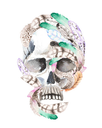 guise: Skull with watercolor feathers illustration, hand drawn isolated on a white background