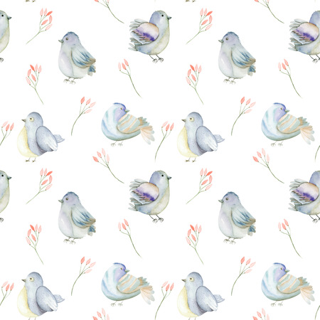 feathery: Seamless pattern of the watercolor blue birds and pink flowers branches, hand drawn on a white background