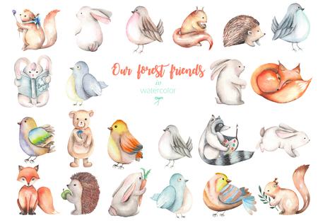 Coleção, grupo de animais da aguarela bonito florestais ilustrações, desenhado mão isolado em um fundo branco