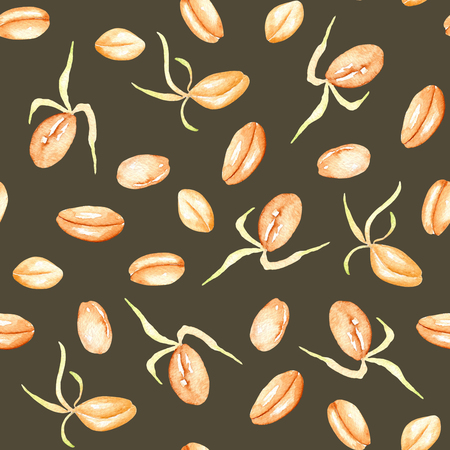 Seamless pattern with sprouted wheat grains hand drawn in watercolor on a brown background