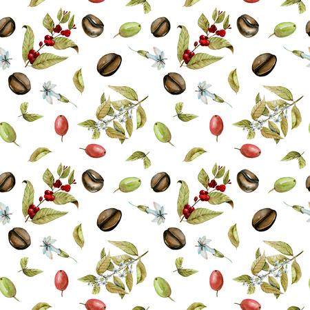Patrón sin fisuras con acuarela ramas florecientes de café, granos de café rojo y verde, pintado a mano aislado en un fondo blanco