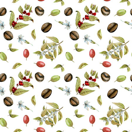 Seamless pattern with watercolor flowering branches of coffee, red and green coffee beans, hand painted isolated on a white background