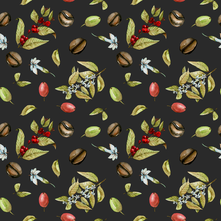 Seamless pattern with watercolor flowering branches of coffee, red and green coffee beans, hand painted isolated on a dark background
