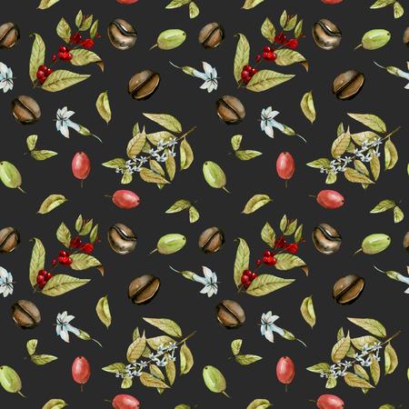 Zökkenőmentes minta vízzel virágzó ágak kávé, vörös és zöld kávébab, kézzel festett elszigetelt sötét háttér