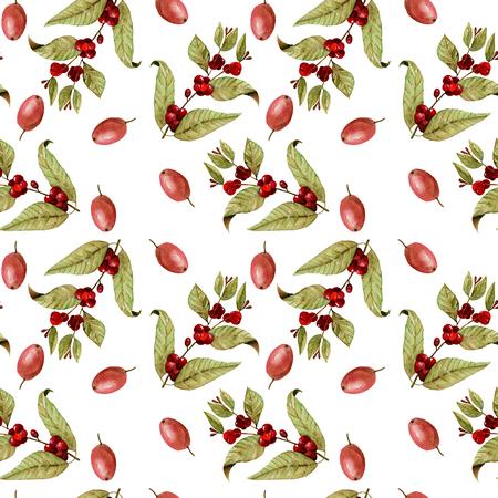 無縫模式與水彩成熟的咖啡豆在樹枝上和紅色咖啡豆,手繪在白色背景孤立 版權商用圖片