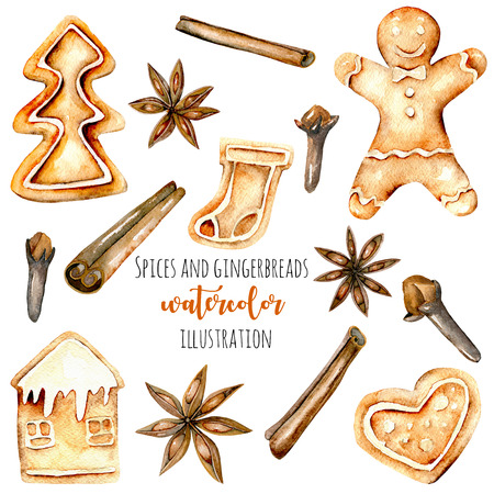 Set of watercolor gingerbreads and spices (cinnamon, anise star and cloves), hand drawn isolated on a white background