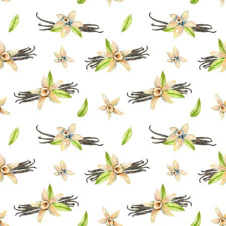Patrón sin fisuras con flores de vainilla acuarela, pintado a mano aislado en un fondo blanco