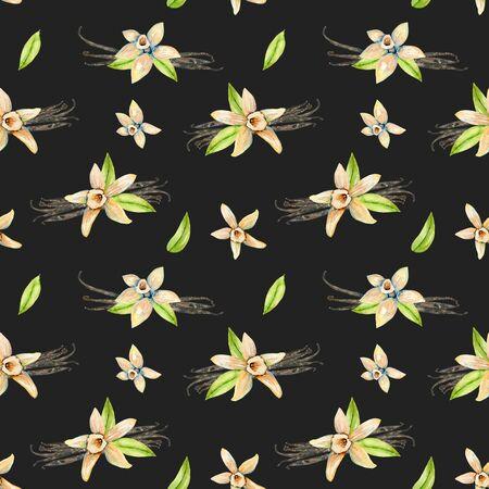 Бесшовные шаблон с акварель цветы ванили, ручная роспись, изолированных на темном фоне Фото со стока