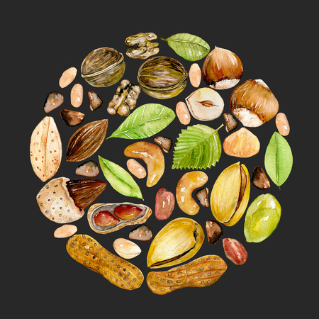 Circle illustration of watercolor nuts, hand drawn isolated on a dark background