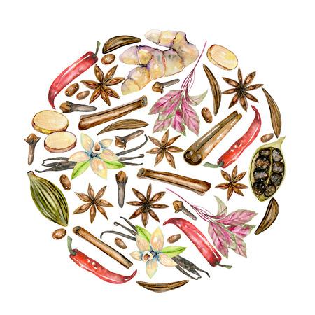 Círculo de ilustração de especiarias de aguarela (canela, anis, alcaravia, cardamomo, manjericão, pimenta vermelha, gengibre, baunilha e cravo), mão desenhada isolada em um fundo branco