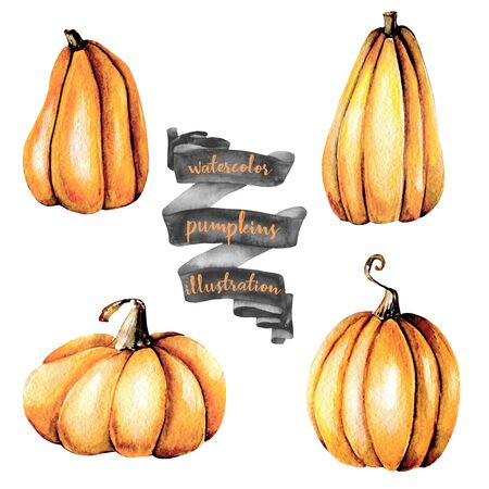 Set of watercolor pumpkins, hand painted isolated on a white background Lizenzfreie Bilder