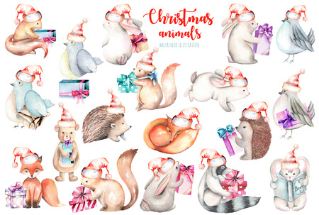 Collection, set of watercolor cute Christmas forest animals illustrations, hand drawn isolated on a white background